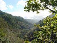 dsc00616_caaveiro_vista_desde_el_monasterio