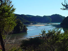 Una panorámica de la costa del Abel Tasman