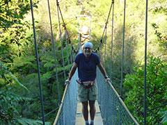 Un puente colgante en los bosques umbríos