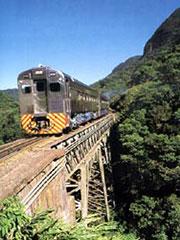 El tren sobre un puente