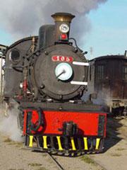 La locomotora alemana de La Trochita, de 1922