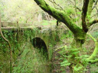 Además de las fiestas, Galicia tiene rincones mágicos y tranquilos