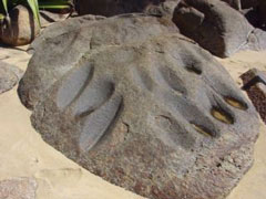 Piedras amolares arqueológicas