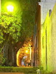 Colonia de noche