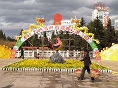El gallo en Kunming