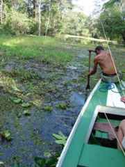 Así se navega por los igarapés