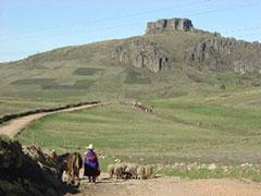 Camino de Cumbe Mayo