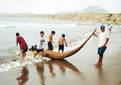 Los caballitos de totora de Huanchaco