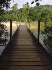 Puente en Palmas