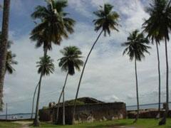 El fortín en ruinas