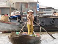 Barcas de remos en el delta
