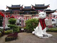 El gato, símbolo de Kuching