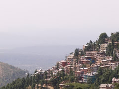Panorámica de Dharamsala