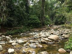 El río que tantas veces cruzaríamos