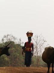Imágenes tomadas en ruta. Así se transportan las mercancías en Guinea