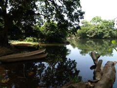 El río Kambia