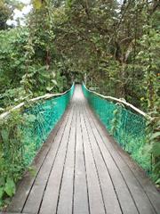 El puente colgante de entrada al parque