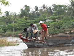 barcas en el delta
