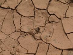 Este suelo casi no recibe agua