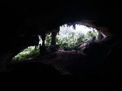 Gran Cueva de Niah