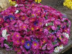 Flores en el mercado de Mysore
