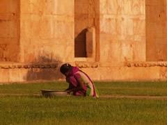 Cuidando la hierba