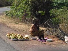 Imágenes tomadas en ruta. Venta de mangos