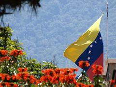 Flores y bandera venezolana