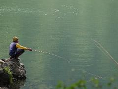 Pescando para la cena