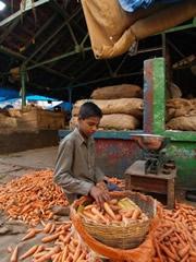 Vendedor de zanahorias en el mercado