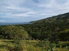 Vistas de Komodo