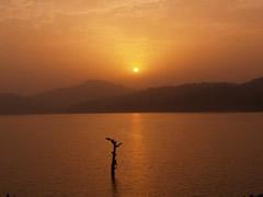 La puesta de sol