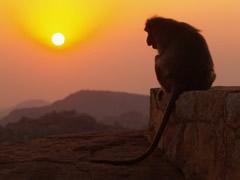Puesta de sol en el templo Hanuman