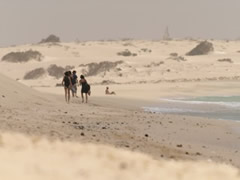 Dunas grandes en la playa