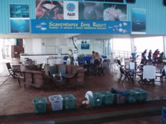 La plataforma de Seaventures Dive Resort