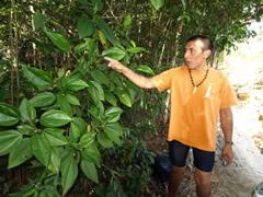 Carlos dando explicaciones sobre plantas