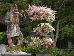 Estatuta en Tirta Gangga