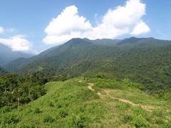 Sendero entre los montes