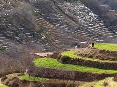 Terrazas para cultivos