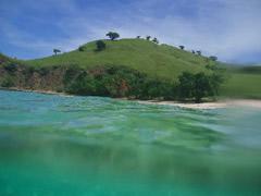 Buceando en Sumbawa
