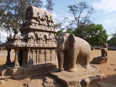 Elefante a tamaño natural en los cinco Rathas