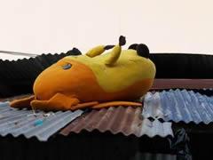 Pikachu solitario