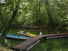 Las barcas esperando a los turistas en Clearwater