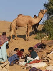 Camelleros cocinando