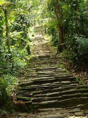 La escalinata de 2000 escalones