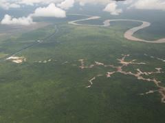 Las madereras se instalan cerca de ríos para poder transportar los troncos