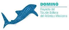 Logo proyecto Dominó