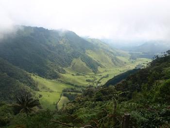 El valle del Cocora entre nubes