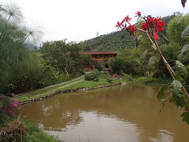 07_Jardín