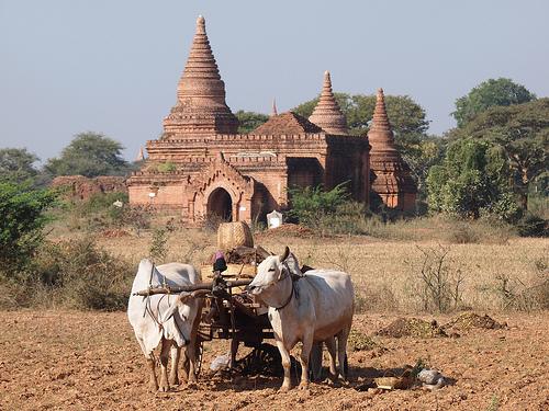 10_Bagan